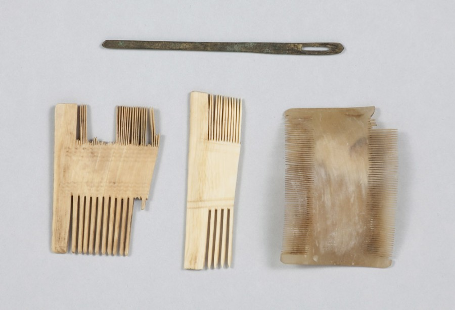 Heinrich-Schütz-Haus Weißenfels | 17th-century lice combs and needle discovered inside the building